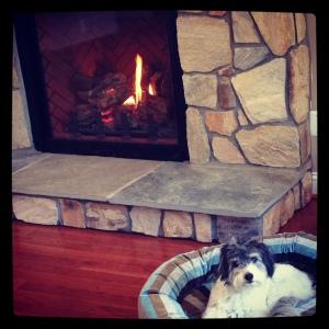 Levi fireplace