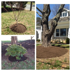 Landscaping 2014 summary