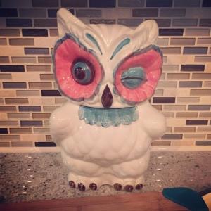 Winky Owl Jar